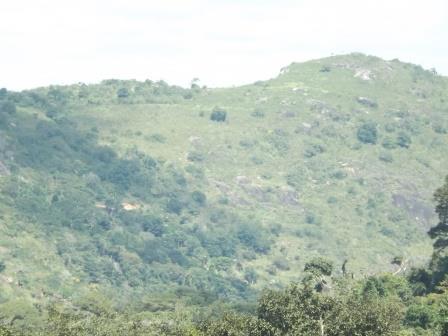 passeio ecologico da crisma 2014 - Serra dos Cavalos (115)