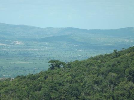 passeio ecologico da crisma 2014 - Serra dos Cavalos (116)