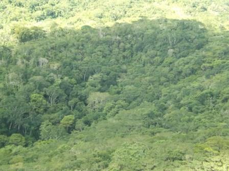 passeio ecologico da crisma 2014 - Serra dos Cavalos (132)