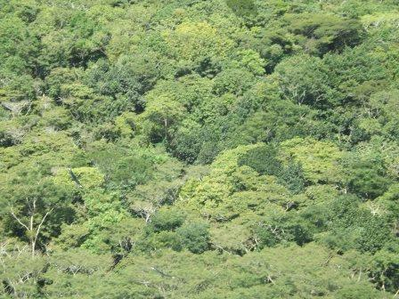 passeio ecologico da crisma 2014 - Serra dos Cavalos (159)