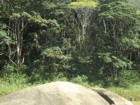 passeio ecologico da crisma 2014 - Serra dos Cavalos (61)