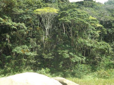 passeio ecologico da crisma 2014 - Serra dos Cavalos (62)