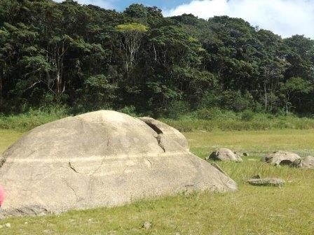 passeio ecologico da crisma 2014 - Serra dos Cavalos (63)