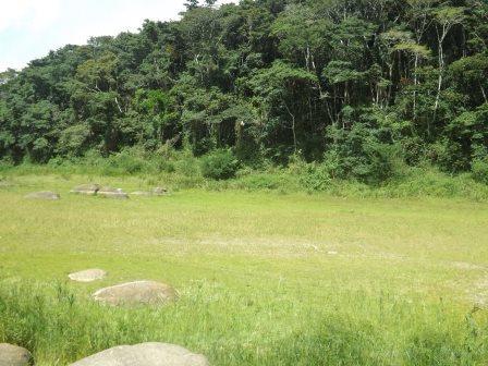 passeio ecologico da crisma 2014 - Serra dos Cavalos (64)