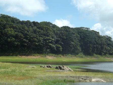 passeio ecologico da crisma 2014 - Serra dos Cavalos (66)