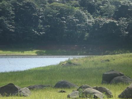 passeio ecologico da crisma 2014 - Serra dos Cavalos (68)
