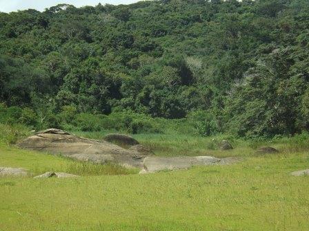 passeio ecologico da crisma 2014 - Serra dos Cavalos (69)