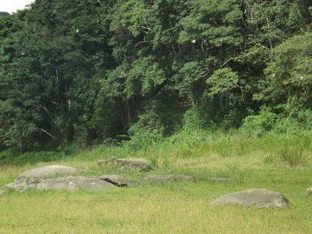 passeio ecologico da crisma 2014 - Serra dos Cavalos (70)