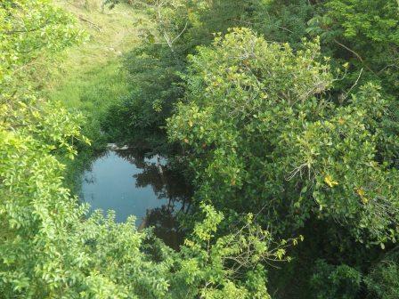 passeio ecologico da crisma 2014 - Serra dos Cavalos (9)