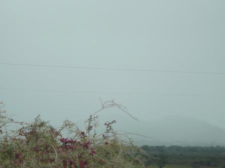 paisagem do dia (10)